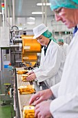 Quality-control workers as a production line in a cheese factory