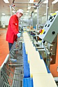 A quality inspector at a production line in a cheese factory