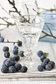 A glass of sloe schnapps