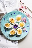 Hard-boiled eggs and spring flowers on a light blue plate