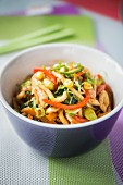 Yaki Udon with chicken and vegetables (Japan)