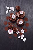 Cupcakes decorated with white sugar flowers