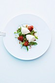 White tomato foam with tomatoes and rocket