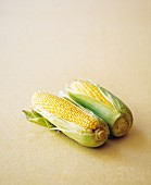 Two cobs of corn