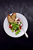 Tomato mozzarella salad with crispy bread