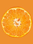 A slice of mandarin on an orange surface, close-up