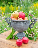 Apples in a stone amphora on a garden table