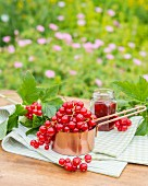 Redcurrants in a copper pan on a garden table