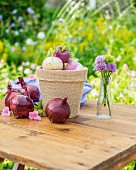 Turnips in a flower pot with red onions on a garden table