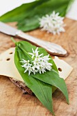 A slice of bread topped with cheese, wild garlic leaves and edible wild garlic flowers
