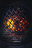 Glowing charcoal under a grill rack