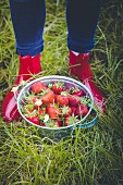 A person wearing rubber boots standing behind a bucket of strawberries in the grass