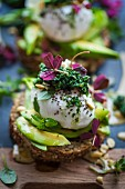 Bread topped with avocado, a poached egg, and green cabbage tapenade (Superfood)