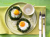Spinach nests with eggs