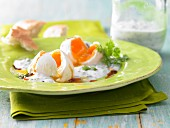 Poached eggs with herb & yoghurt sauce