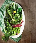 An arrangement of leaf vegetables (chard, baby spinach, beetroot leaves, celery leaves, vine leaves and pak choi)