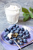 Fresh blueberries with sugar and whipped cream