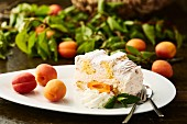 Kardinalschnitte (Austrian sponge cake, meringue and mousse slice) with apricots