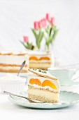 Cake with apricots, pudding and cream