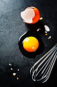 Raw egg on dark background