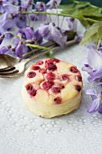 Fresh cheesecake with red currants