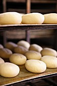 Bread rolls baking in the oven at a bakery