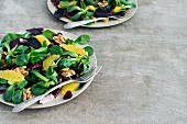 Mixed Salad with Orange, Wallnuts and Dried Cranberries
