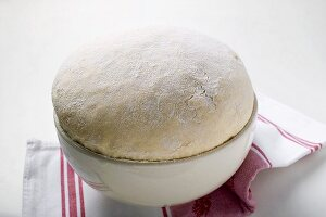 Fresh yeast dough in a bowl