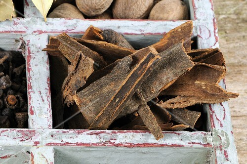 Cinnamon bark in old type case