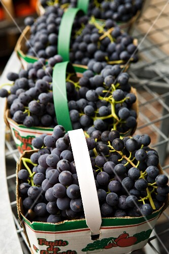 Red grapes in cartons for sale