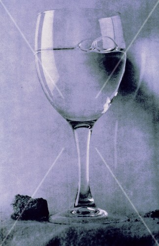 A Stem Glass with Water