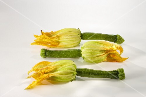 Three courgette flowers