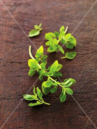 Fresh Oregano on Wood