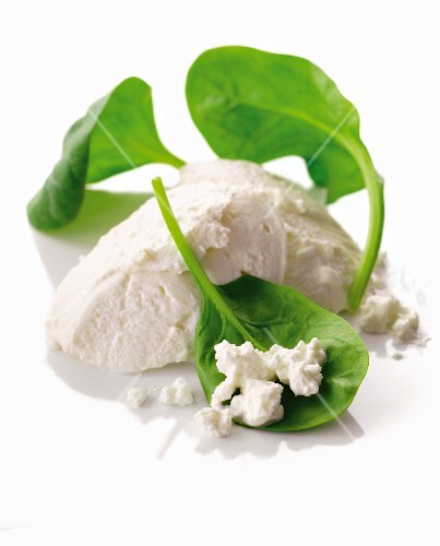 Ricotta and fresh spinach leaves