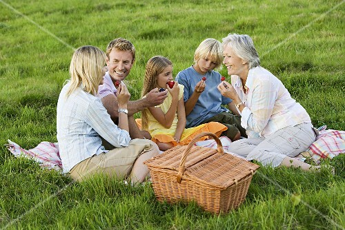 A family including children and a grandmother having a picnic