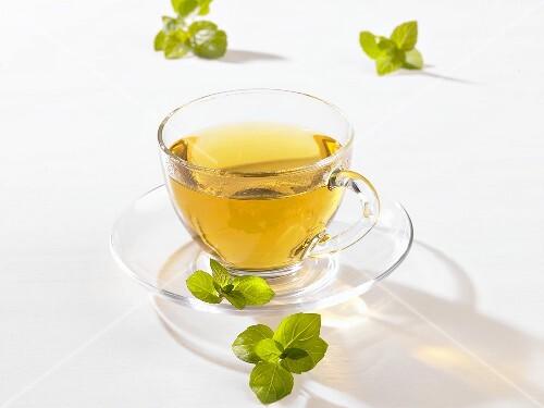Чай из мяты для месячных
