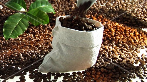 Filling a sack with coffee beans
