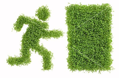 Picture symbolising Emergency Exit in cress