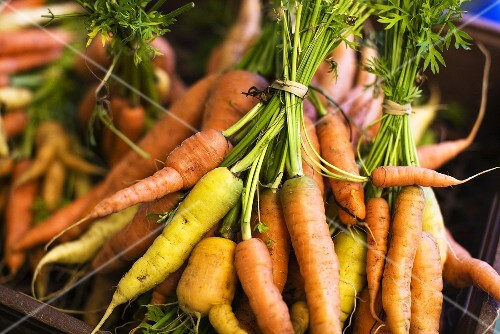 Bunches of fresh carrots in crate