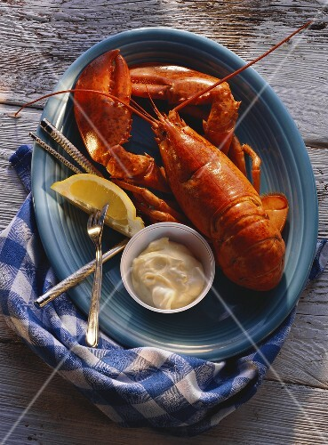 Boiled Lobster with Mayonnaise