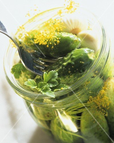 Pickled gherkins with fennel