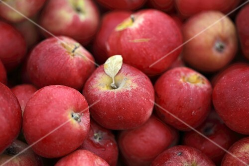 Many Assorted Red Apples