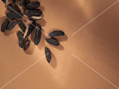 Tonka beans, seen from above
