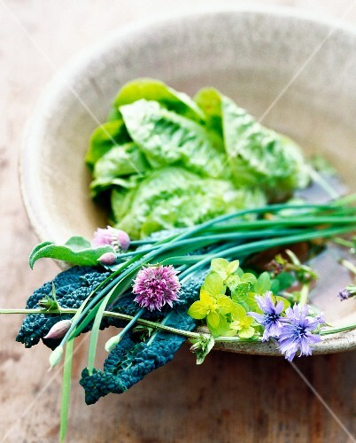 Various type of lettuce leaves and herb flowers in a bowl