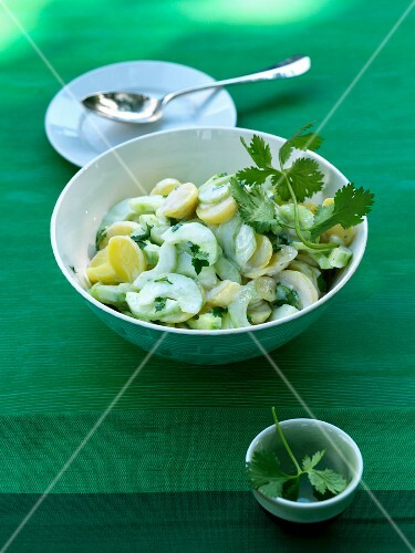 Cucumber salad with potatoes