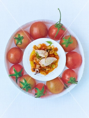 Stuffed calamaretti surrounded by tomatoes