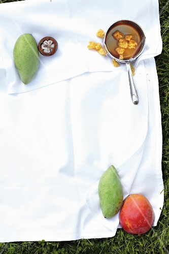 Ingredients for a mango dessert on a cloth on the grass