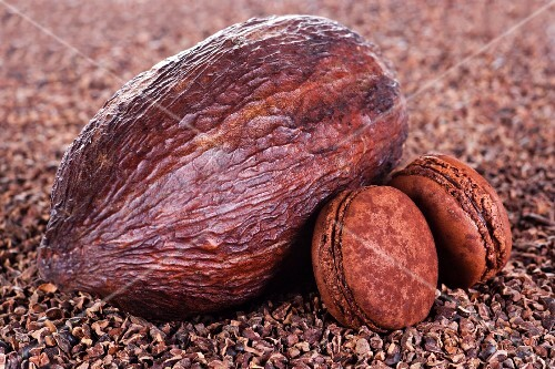 A cacao fruit and chocolate macaroons