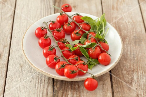 Cherry tomatoes and basil on a plate