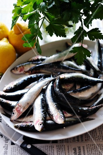 Fresh sardines with lemons and parsley